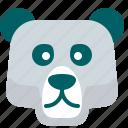 bear, cold, ice, polar, zoo
