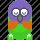 bird, night, parrot, rest, sleep, wait