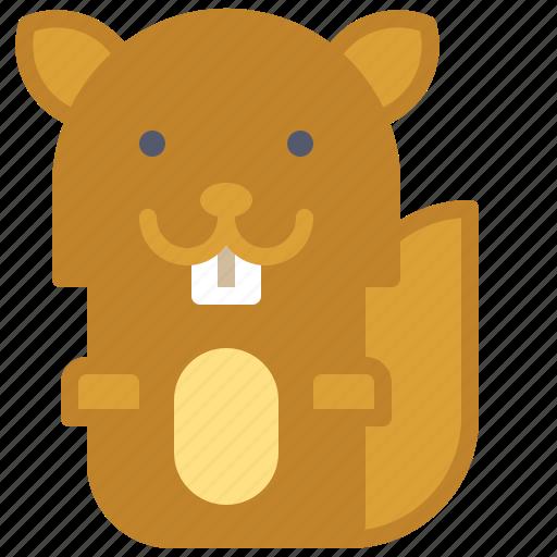 friendly, happy, squirrel, tree, wild icon