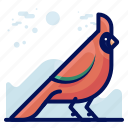 animal, bird, colourful, wildlife icon