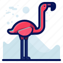 animal, bird, flamingo, wildlife icon