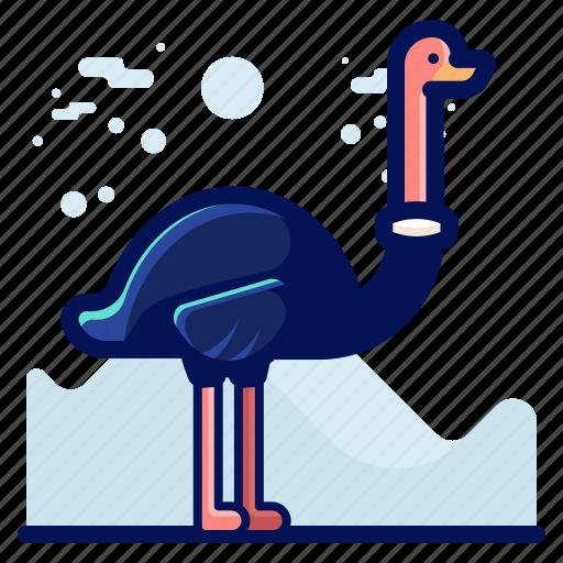 Animal, bird, ostrich, wildlife icon - Download on Iconfinder