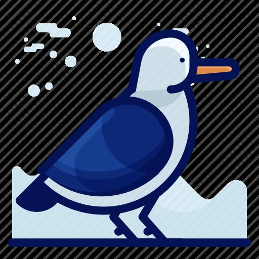 Animal, bird, seagull, wildlife icon - Download on Iconfinder
