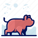 animal, farm, mammal, pig, wildlife icon