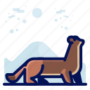 animal, ferret, mammal, wildlife icon