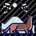 animal, ferret, mammal, wildlife icon
