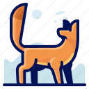 animal, fox, mammal, wildlife icon