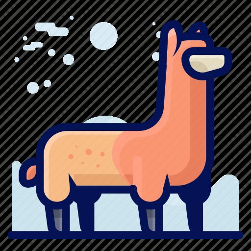 Animal, farm, llama, mammal, wildlife icon - Download on Iconfinder