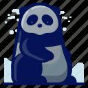 animal, bear, mammal, panda, wildlife icon