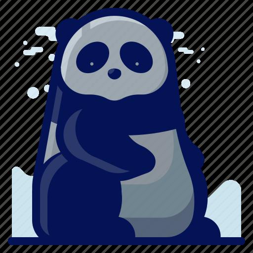 Animal, bear, mammal, panda, wildlife icon - Download on Iconfinder