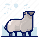 animal, farm, mammal, sheep, wildlife icon