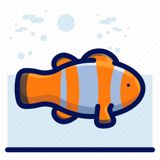 animal, clown, fish, ocean, sea, wildlife icon