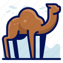 animal, camel, desert, wildlife icon