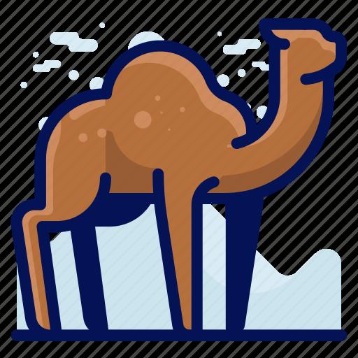 Animal, camel, desert, wildlife icon - Download on Iconfinder