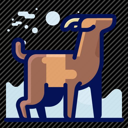 animal, goat, mountain, wildlife icon