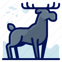 animal, forest, moose, wildlife icon