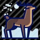animal, deer, forest, rheindeer, wildlife icon