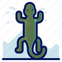 animal, geko, reptile, salamander, wildlife icon