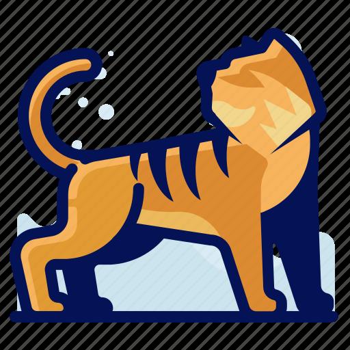 Animal, feline, tiger, wildlife icon - Download on Iconfinder