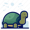 animal, pet, turtle, wildlife icon