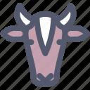 animal, animals, cow, face, farm, milk, suprdaily icon