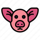 animal, farm, head, mammal, pig
