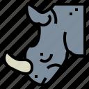 animal, mammal, rhino, rhinoceros, wildlife