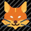 animal, dog, fox, mammal, wildlife