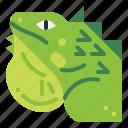 animal, iguana, lizard, reptile, wildlife icon