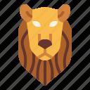 animal, lion, predator, wildlife