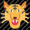animal, predator, tiger, wildlife