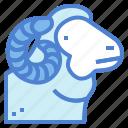 animal, farm, lamb, merino, sheep