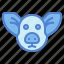 animal, farm, head, mammal, pig