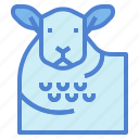 animal, farm, lamb, mammal, sheep