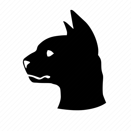 animal, cat, home, pet icon