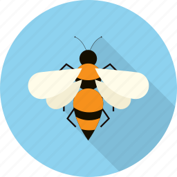 animal, bee, bug, fly, honey, insect icon