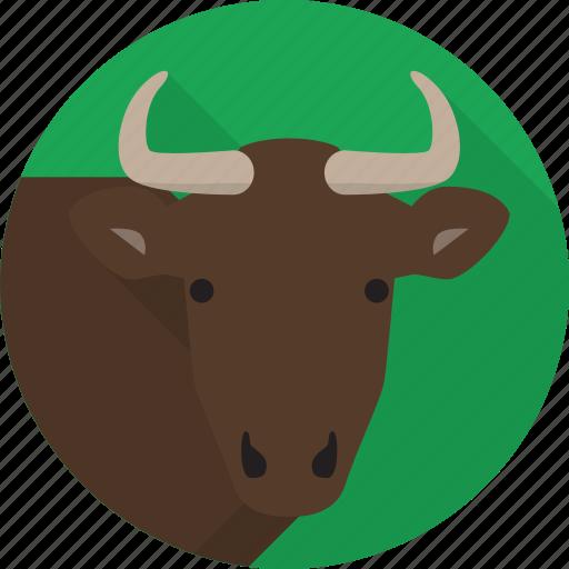 animal, buffalo, face, farm, pet, zoo icon