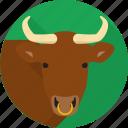 animal, bull, farm, horns