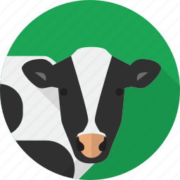 agriculture, animal, cow, farm icon
