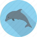 animal, dolphin, fish, ocean, sea icon