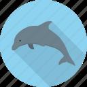 animal, dolphin, fish, ocean, sea icon