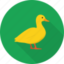 animal, bath, bird, duck, toy icon