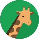 wildlife, giraffe, africa, animal, zoo icon
