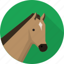animal, chess, horse, pony, riding icon