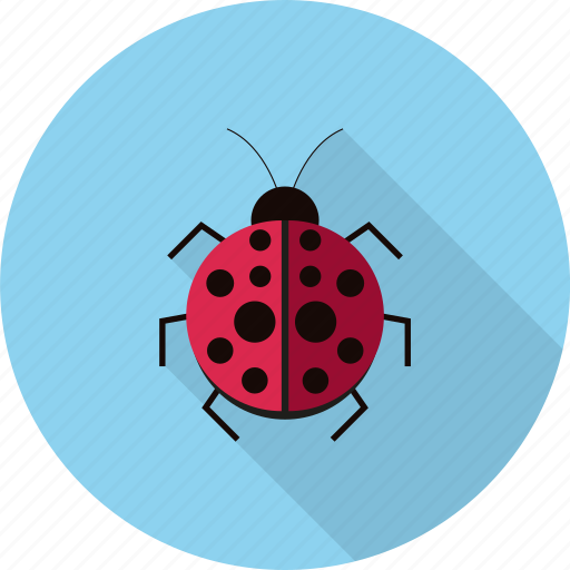 animal, beetle, bug, insect, ladybug, termite icon