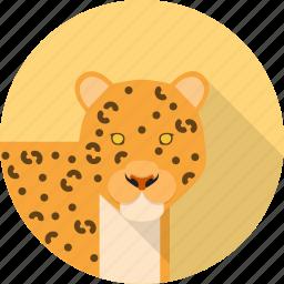 animal, fast, jungle, leopard icon