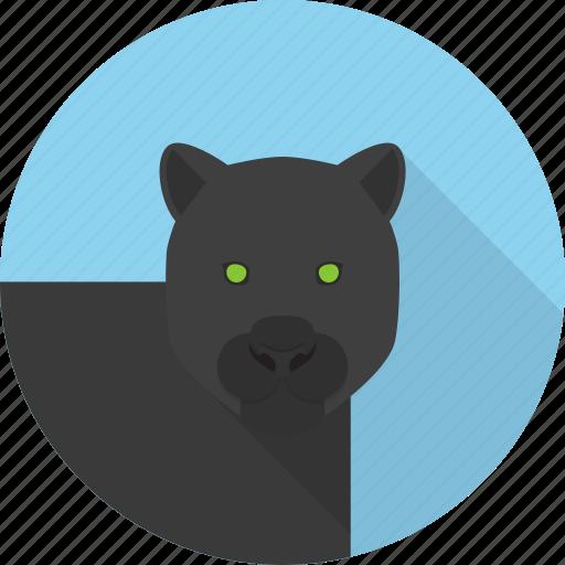 animal, panther, wild icon