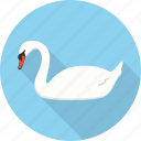 animal, bird, goose, swan, zoo icon