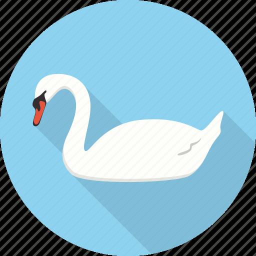 animal, bird, goose, swan, zoo icon