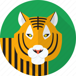 animal, jungle, tiger, wild icon